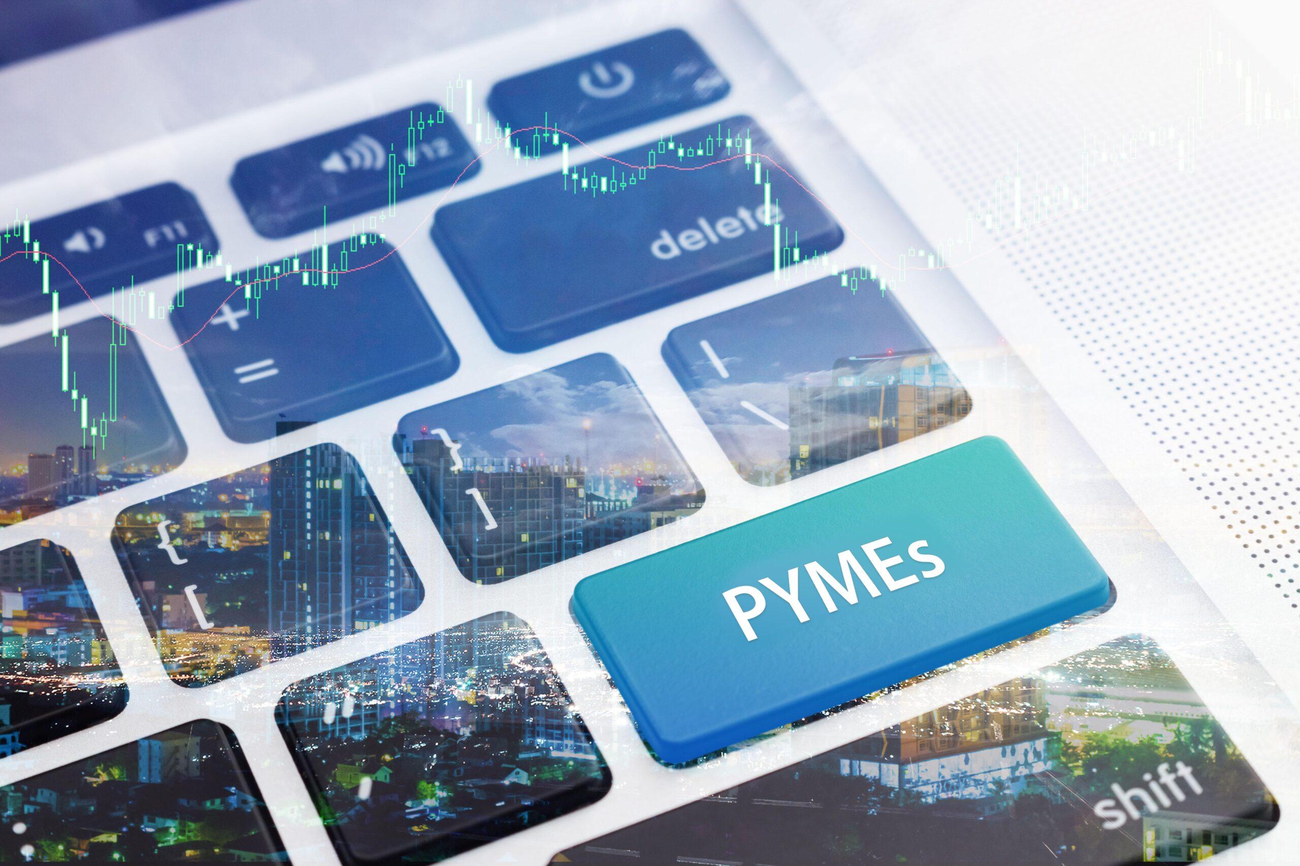 Digitalizacion en la pequeña y mediana empresa